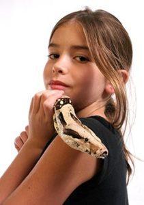Best Snakes For a Beginner